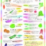 キッチンくすり箱(カレンダー付録)